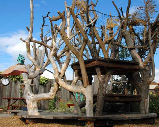 Tree play structure