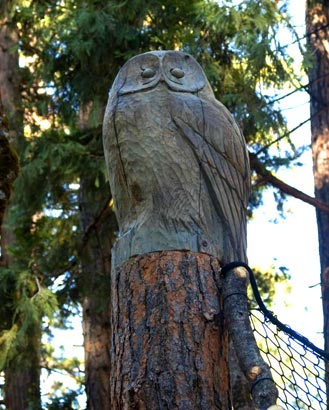 Carved owl post-head