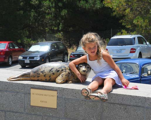 Harbor Seal sculpture and guest